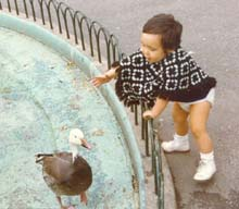 Feeding the animals in Central Park, 1972